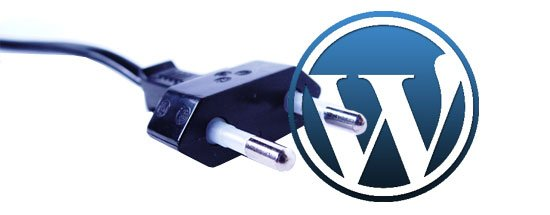 wordpress-plugin Will a WordPress Cache Plugin Help Your SEO?